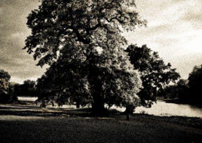 nature (6 von 58)